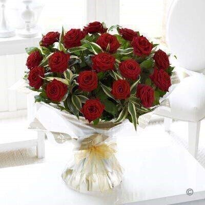 <h1>Red Roses - Flowers in Water</h1>