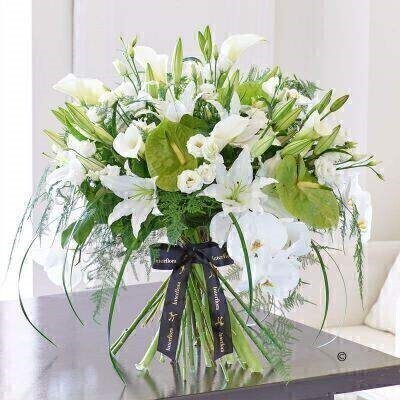 THIS PRODUCT COMES HAND ARRANGED AND GIFT WRAPPED IN A WATER BUBBLE PRESENTED IN A BOX.This striking hand-tied bouquet in ice white and fresh lime green is a showpiece created from a selection of stunning calla lilies Phalaenopsis orchids and exquisite anthurium. It's a flamboyant design that is very much in vogue  and making it a fabulous statement gift.Featuring 3 White Sensation Phalaenopsis orchid green Midori anthurium white Avalanche calla lilies white Rosita double lisianthus and white Helvetia Oriental lilies with asparagus fern Lily grass and salal expertly hand-tied and presented in luxurious packaging for maximum impact when your gift is delivered.This product contains 27 stems.Approximate Product Dimensions:Height: 60cm Width: 60cm