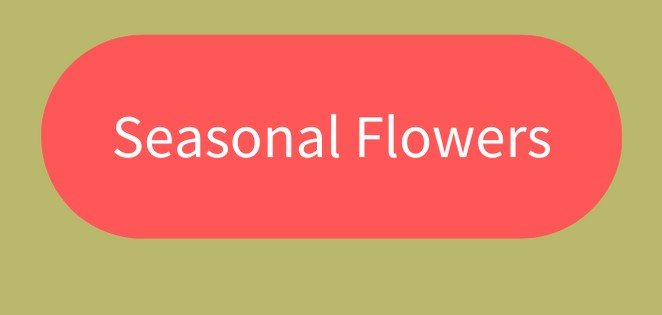 Click to view our beautiful seasonal bouquets